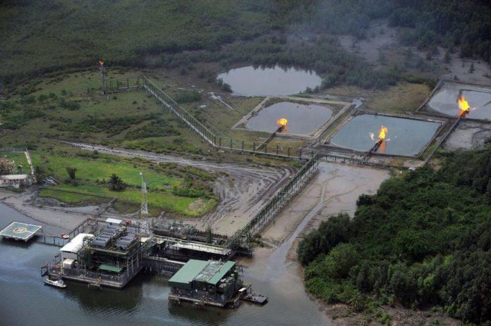 DPR vows to avoid past mistakes in 2020 marginal oilfield bids